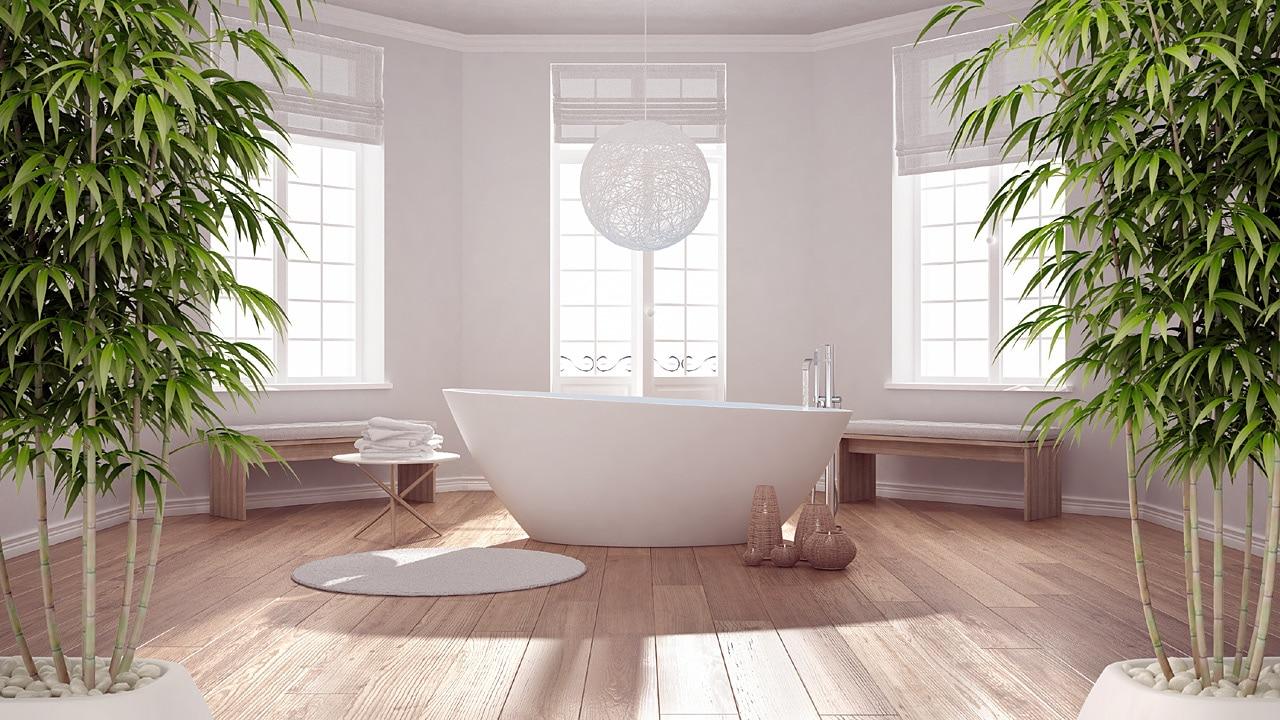 Salle de bain : 15 plantes idéales pour une pièce humide !